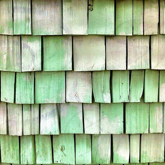 green and light brown wooden wall photo