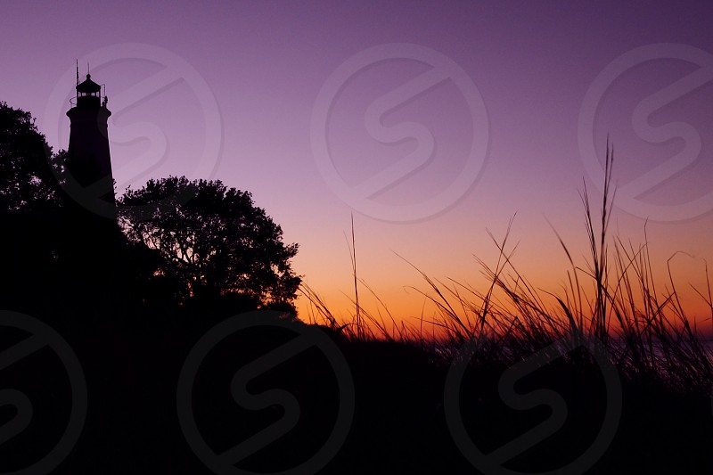 Lighthouse silhouette through the reeds during early morning sunrise. photo
