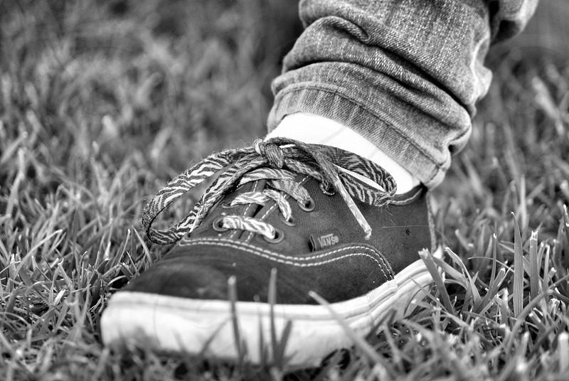 Vans child classics jeans shoe laces photo