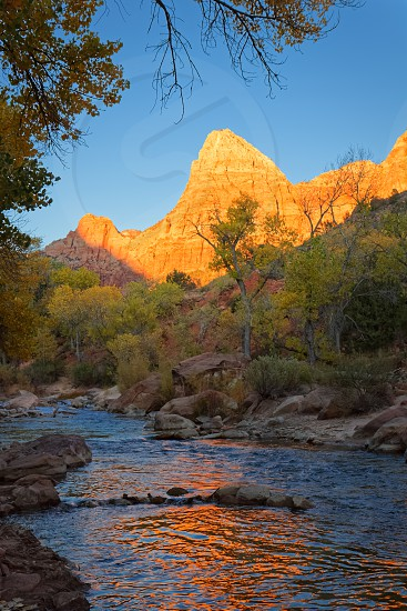 The Watchman in Zion National Park photo