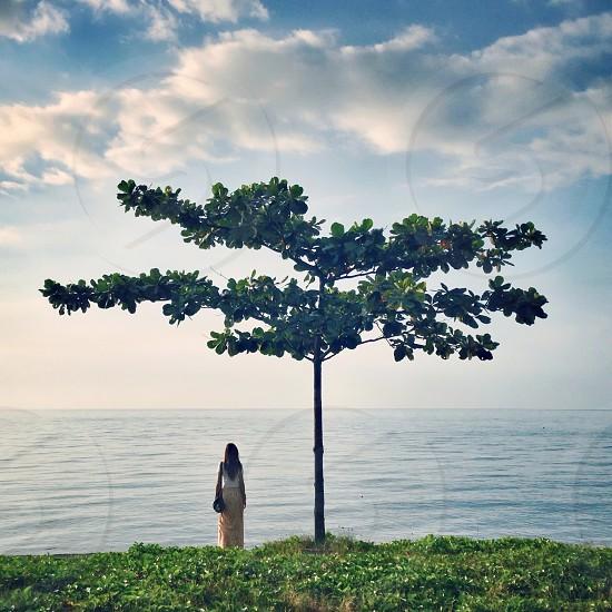 woman standing near the tree photo