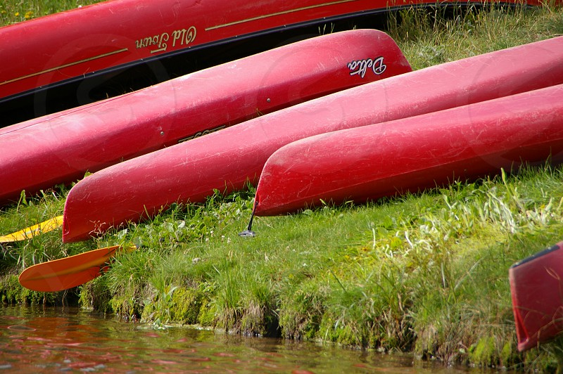 red boats on green grass beside river photo