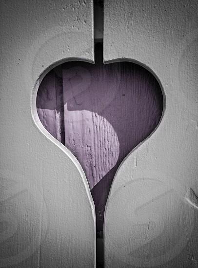 Shuddering Heart  photo