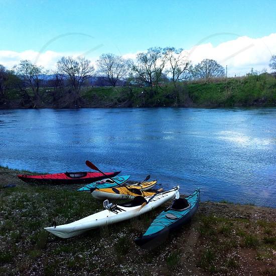 5 kayak near river photo