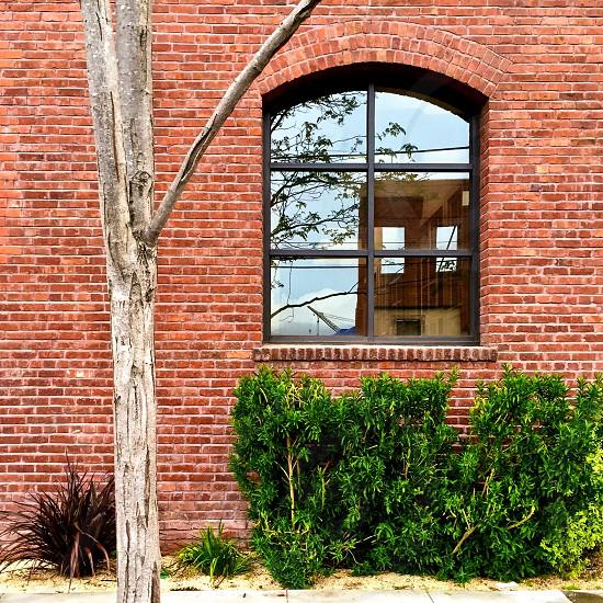 Brick wall window reflection photo