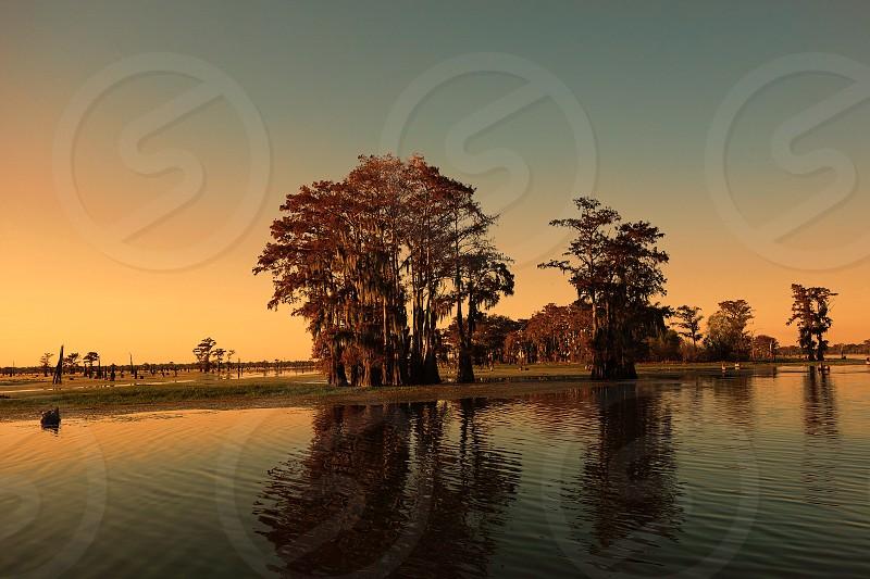 Bayou and cypress trees near Henderson Louisiana. Part of the Atchafalaya basin. photo