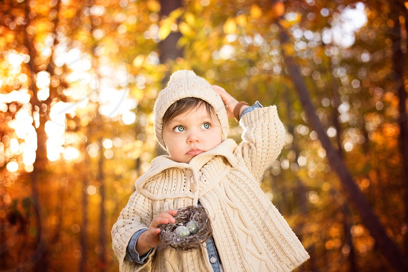 Fall trees nest child hat knitted sweater photo