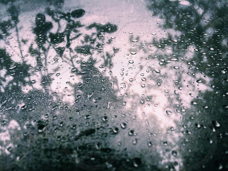 Rain droplets on a window with trees in the background photo
