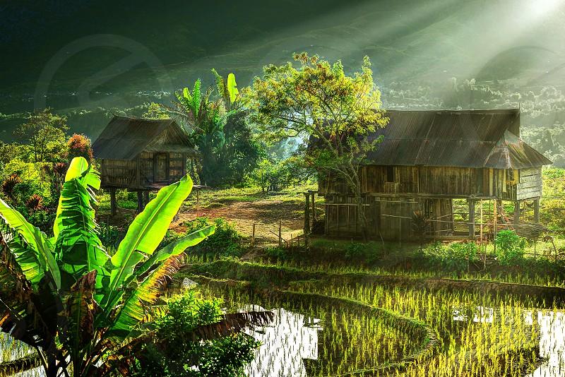 village peace morning. light photo