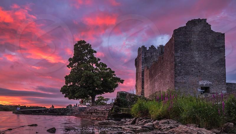Sunset castle tree lake pink photo