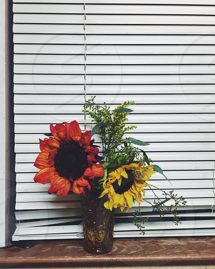 yellow flower and red flower on vase beside window blinds photo