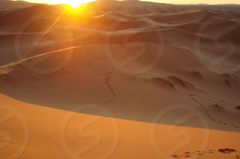 Footsteps in the sand photo