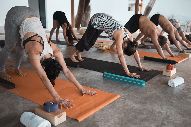 Multiple people exercising yoga on mats photo