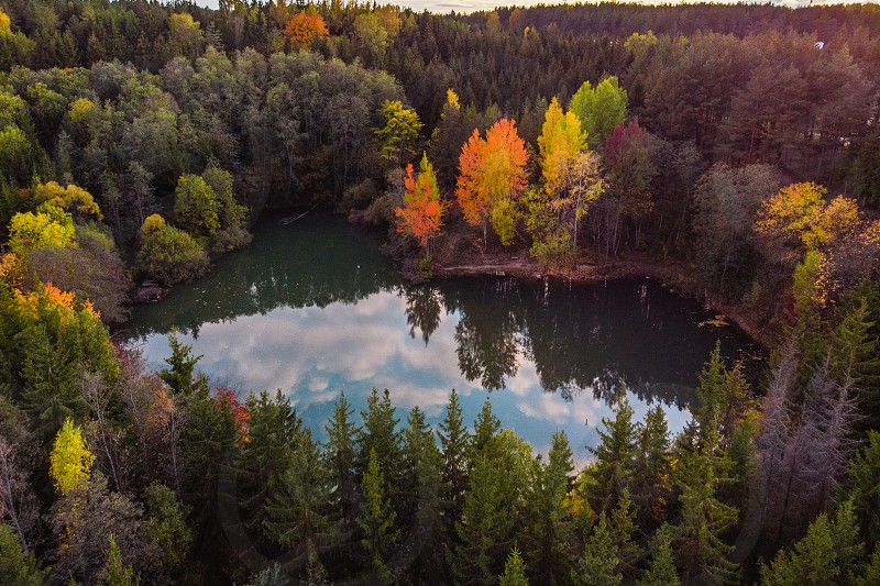 Lake in the middle of the forest woods photo