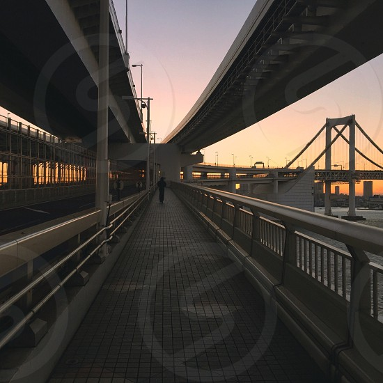 person on walkway with steel fences under elevated road during dusk photo