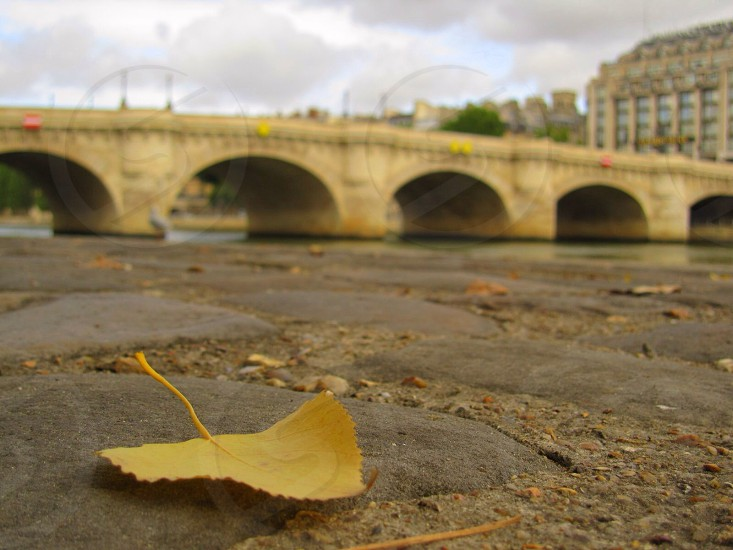 arch bridge view  photo