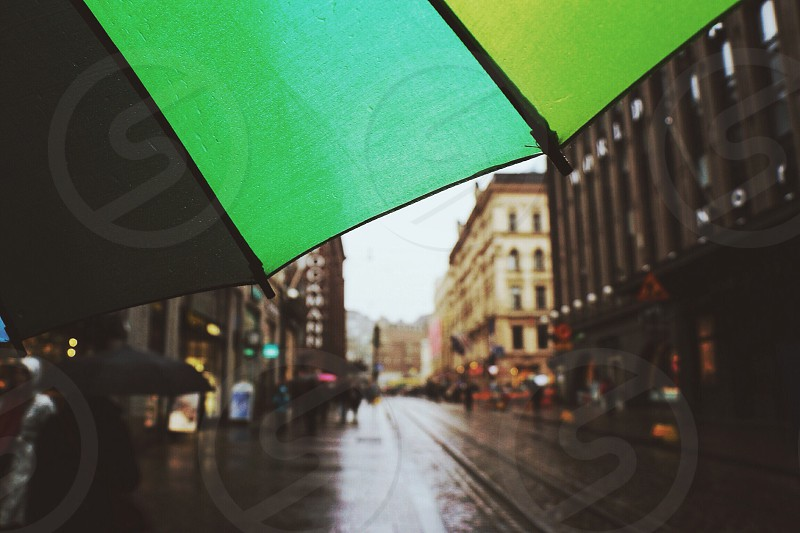 green and black umbrella photo