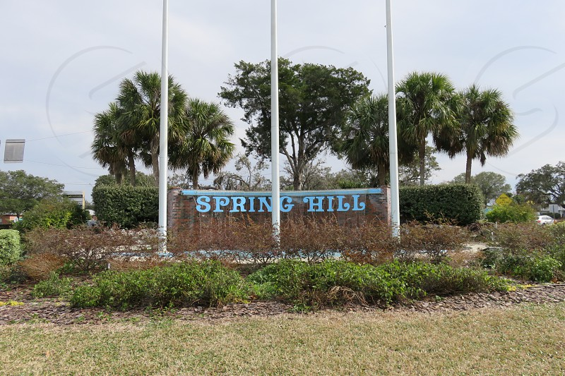 Spring Hill photo