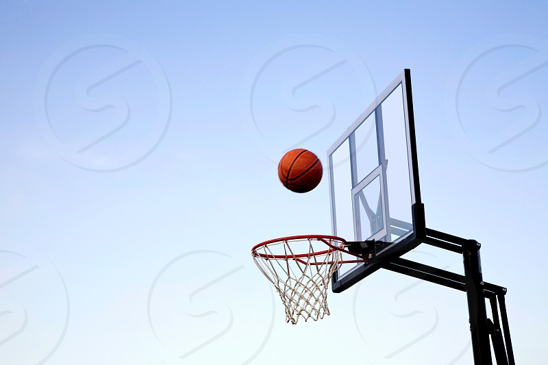Basketball caught in mid air before entering hoop photo