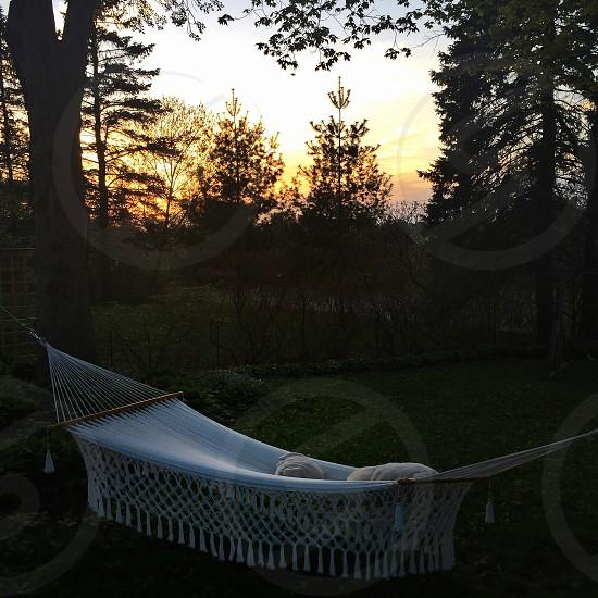 view of hammock on backyard photo