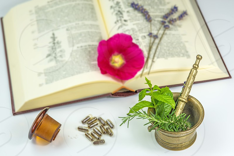 mortar with herbs pills and medieval herbal textbook photo