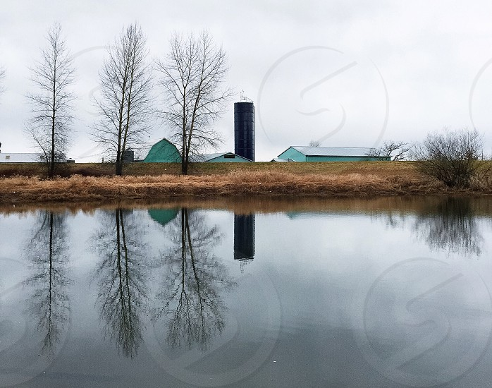 calm water lake with bare trees and green farm buildings with silo in the distance under a grey sky photo