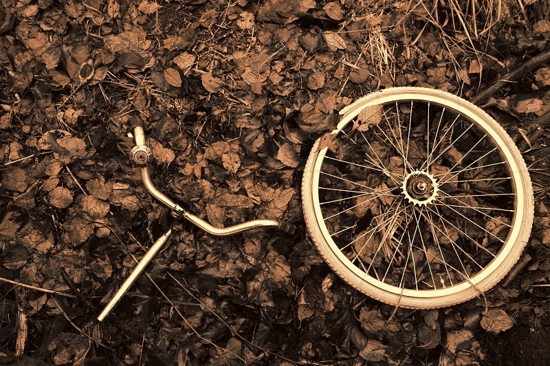 Decomposed bicycle wheel and handlebars with bell abandoned in the woods with Autumn leaves. photo