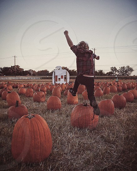 A little boy jumps over pumpkins.  photo