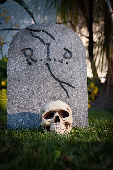 RIP and skull photo