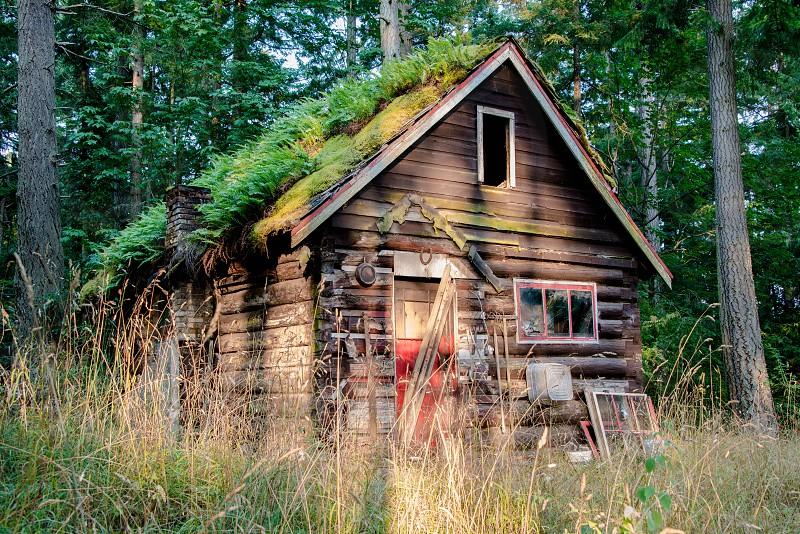 Cottage 6 photo