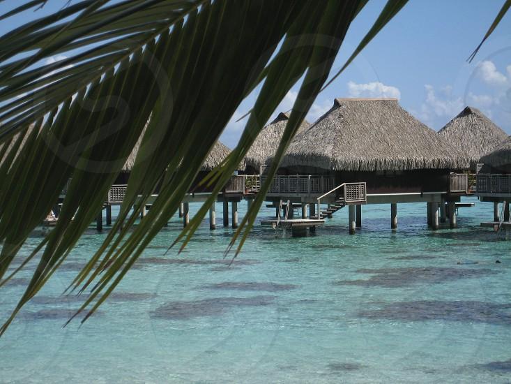 Over the water bungalow Tahiti photo