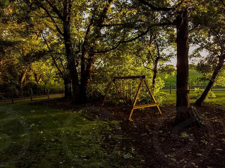 Empty Swingset photo
