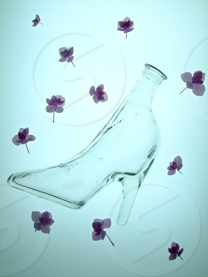 GLASS SHOE photo
