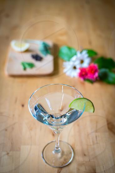 Gin botanicals 4 photo