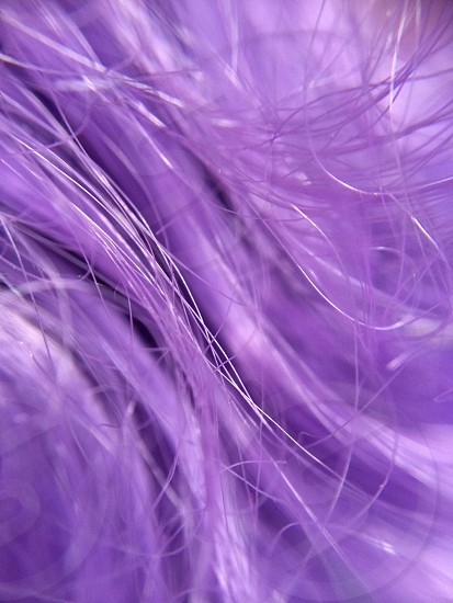 Purple doll hair photo