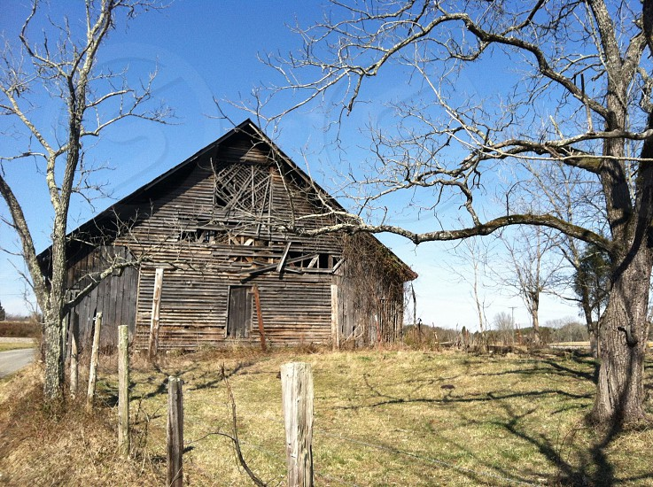 brown wooden barn house nature photography photo