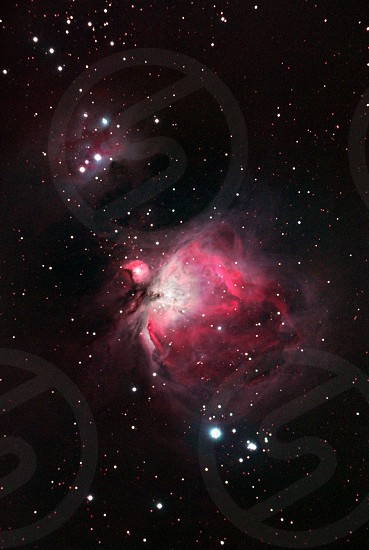 Orion Nebula photo