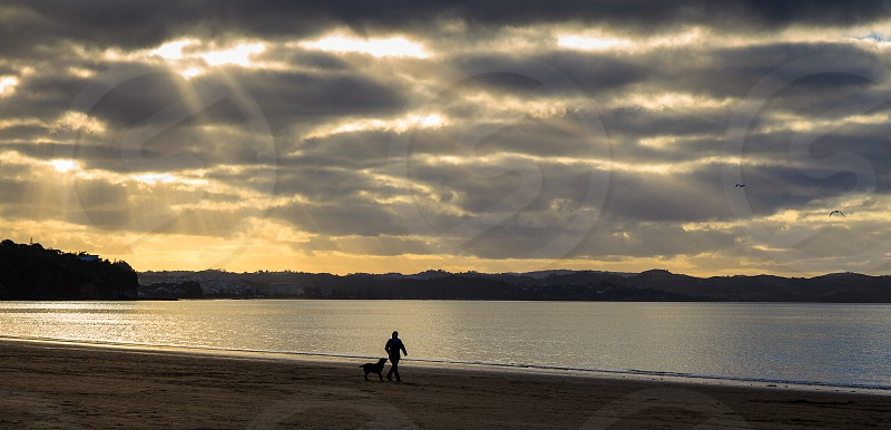 Dog and owner walking along a beach at sunset photo