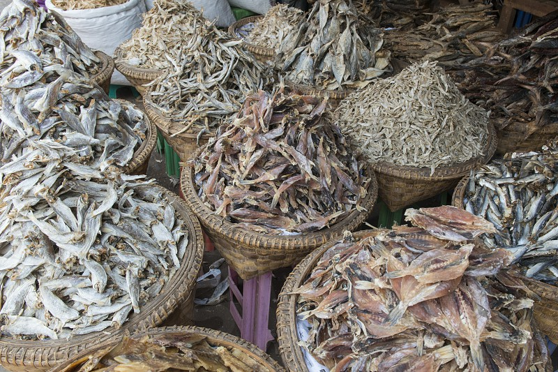 a fish market at a marketstreet in the City of Mandalay in Myanmar in Southeastasia. photo