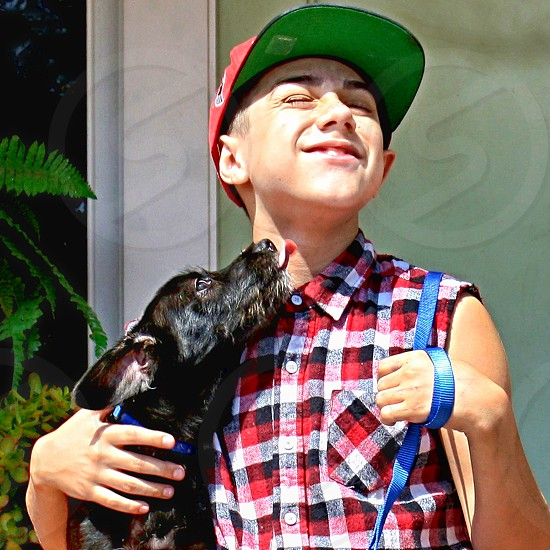 Small black dog gives a wet kiss to a happy little boy. photo