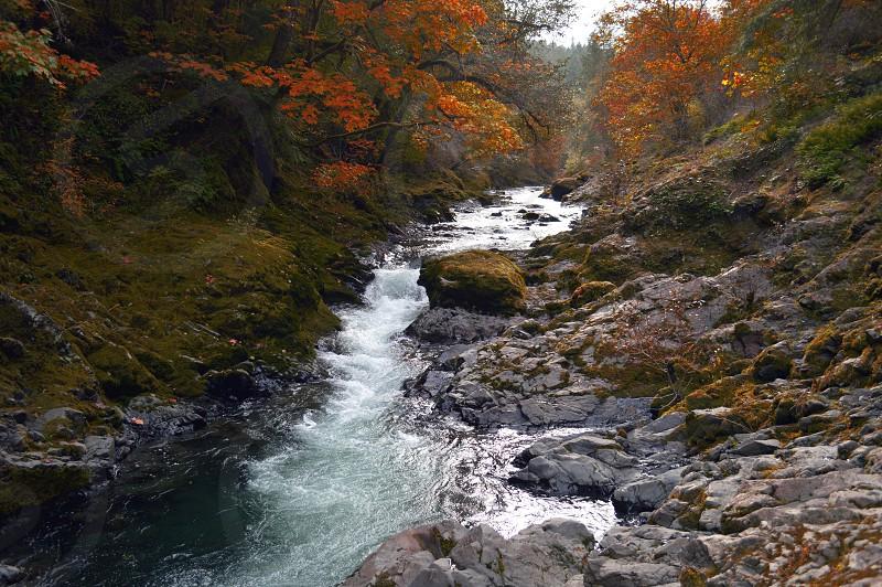 Fall Time Mill Creek Sheridan OR photo