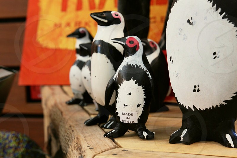 Wooden penguins miniatures collection from woodland zoo Seattle Washington  photo
