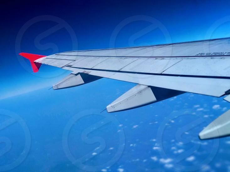 fly high photo
