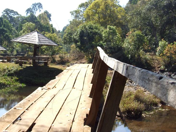 bridge wood old hut hill tree photo