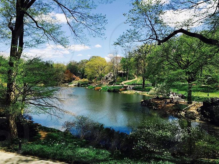 An adventurous escape from within the city.          Central Park New York City. photo