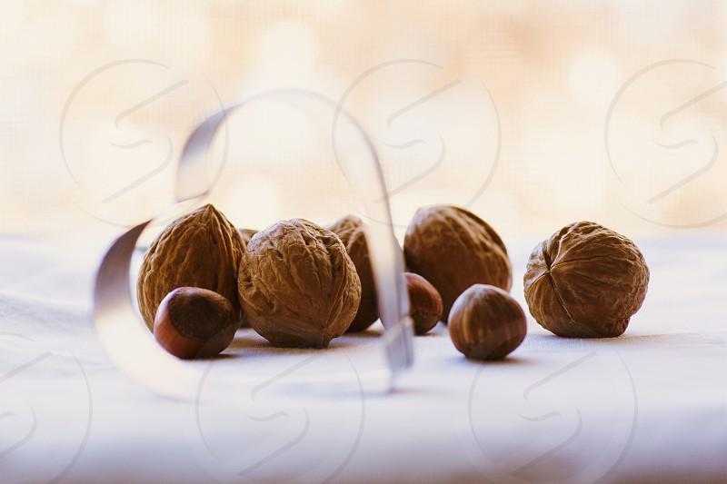 brown nuts photo