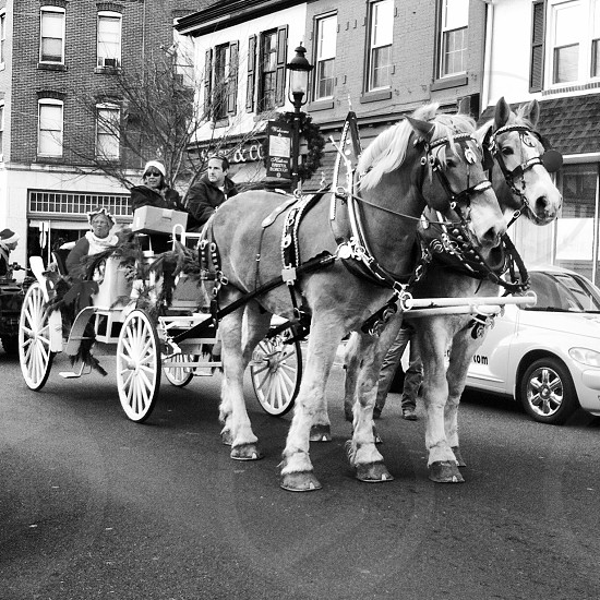 grayscale photo of man and woman riding on carirage photo