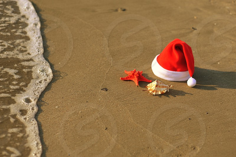 Sea sand beach wave starfish shell sunset dawn the summer holiday joy in a good mood Christmas photo