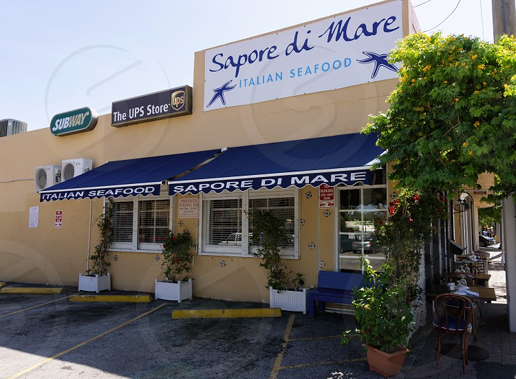 sapore di mare italian seafood signage with blue and white awning near green leaf tree photo