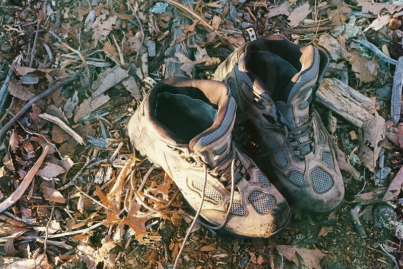 brown shoe photo